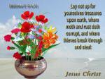 Christian truths (61)