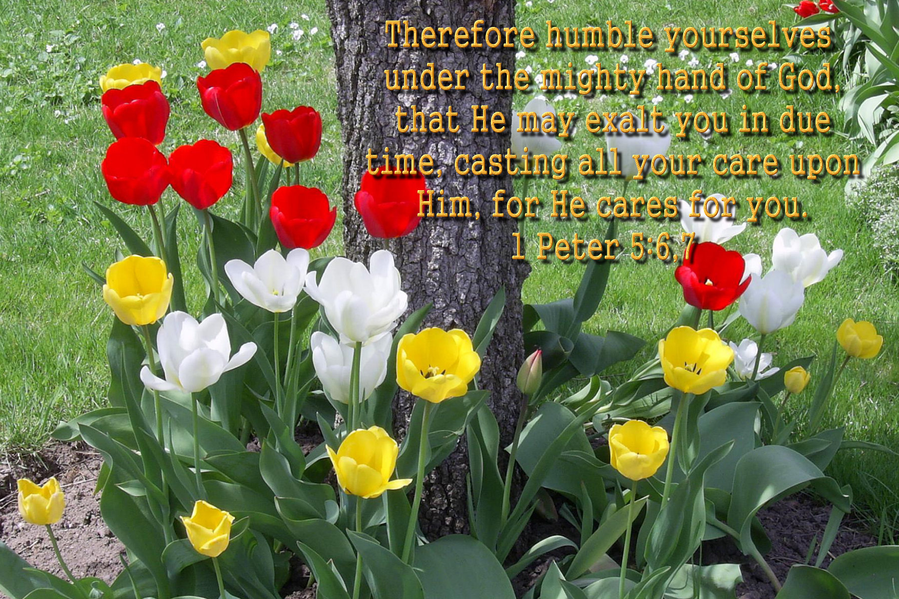Image result for spring bible verses