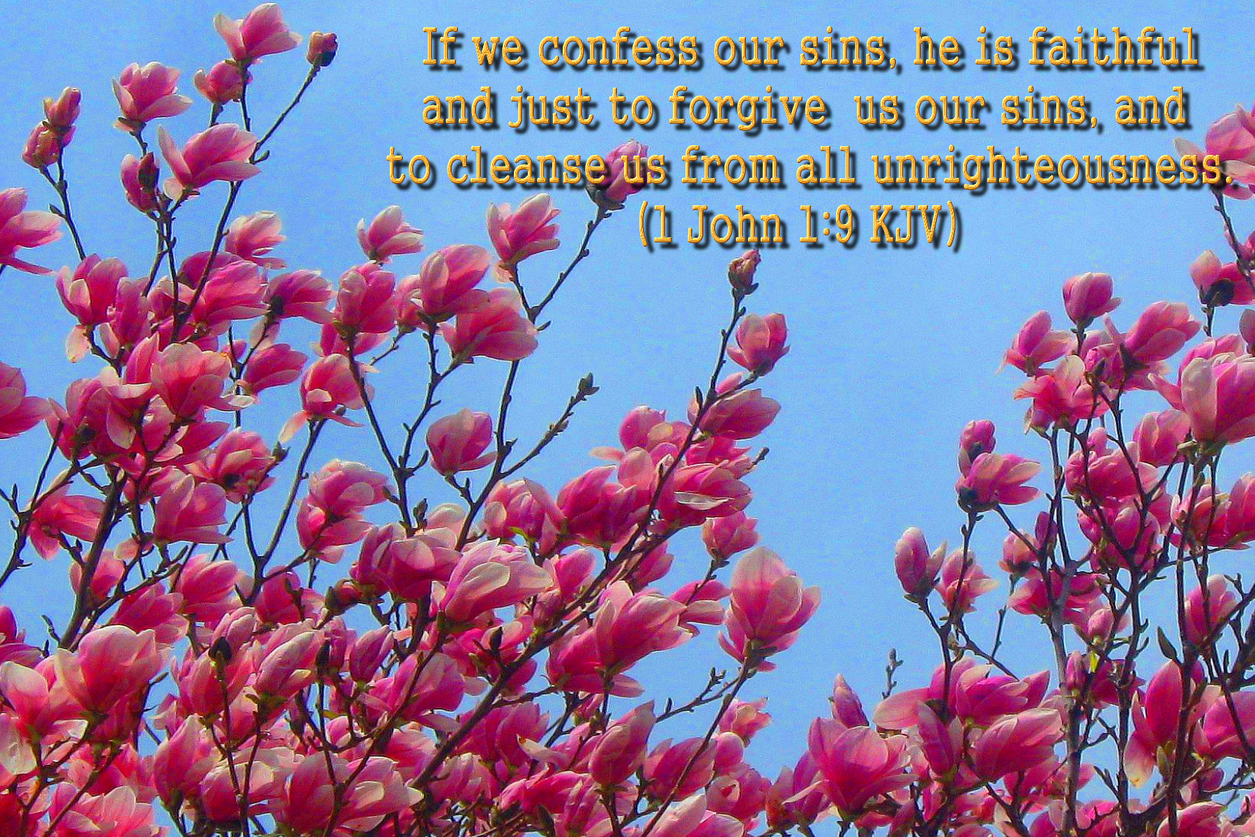 spring wallpaper with bible - photo #6