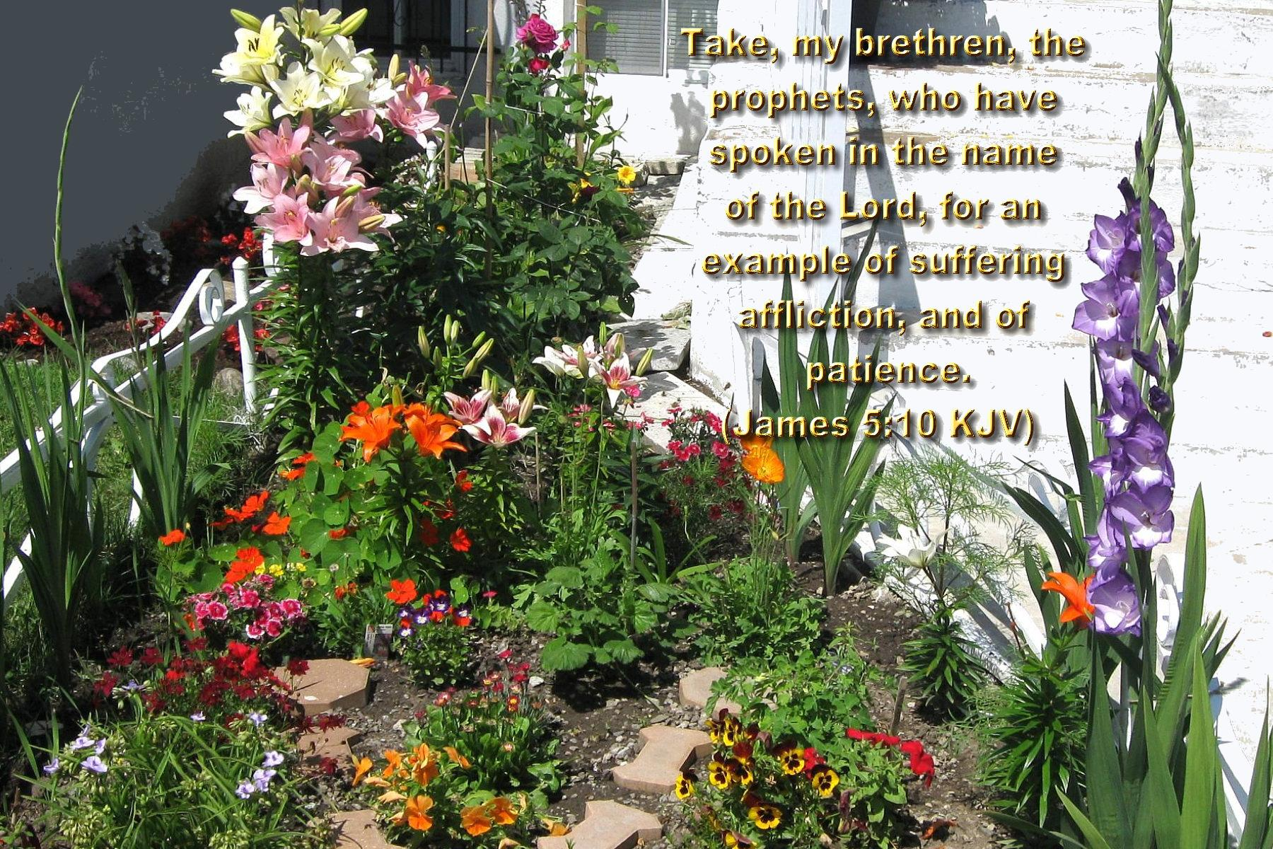 Large garden summer flowers bible versed wallpaper hot discussions dhlflorist Image collections