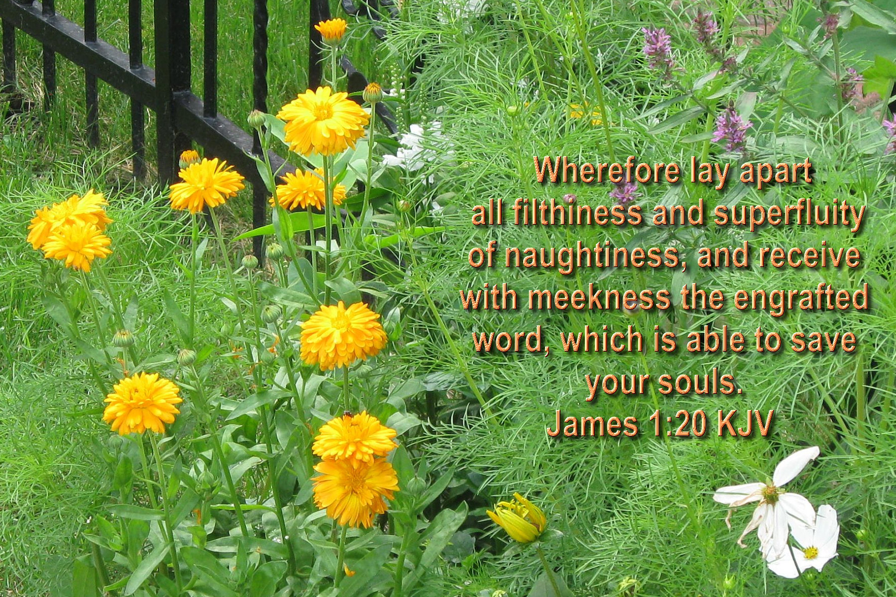 spring wallpaper with bible - photo #29