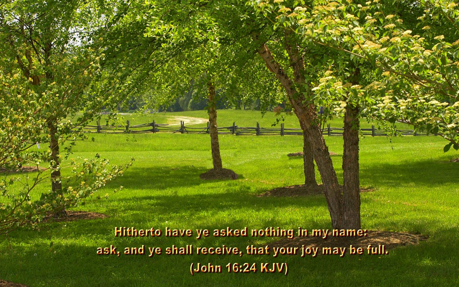 scenic wallpapers bible - photo #17