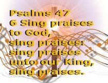 PRAISES (14)