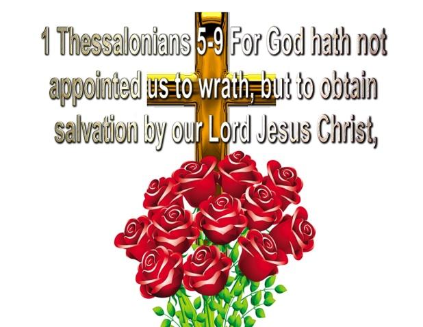 salvation (5)
