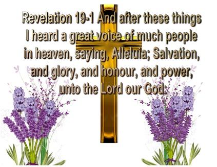 salvation (7)